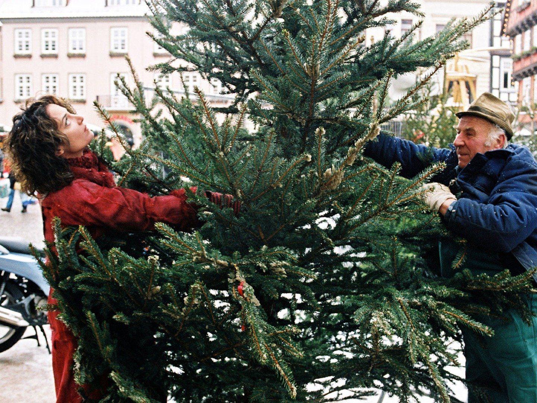 Wenn Weihnachten wahr wird