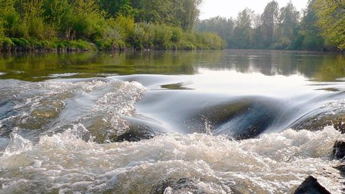 3sat - Kamp - Ein Fluss für alle Sinne