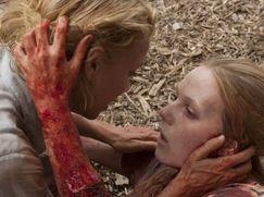 The Walking Dead Staffel 01 Folge 5: Tag 194