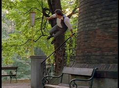 Kommissar Rex Staffel 1 Folge 1: Endstation Wien (Pilotfilm)