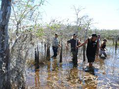 Die Pythonjäger - Einsatz in den Everglades Die Pythonjäger - Einsatz in den Everglades Staffel 1 Folge 2: Onkel Jays Hütte