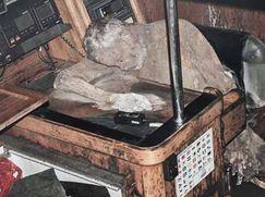 Jeremy Wade: Geheimnisse der Tiefe Jeremy Wade: Geheimnisse der Tiefe Staffel 1 Folge 2: Die Mumie auf dem Meer