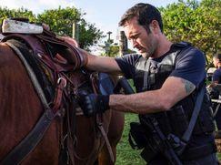 Hawaii Five-0 Staffel 10 Folge 19: Goldrausch