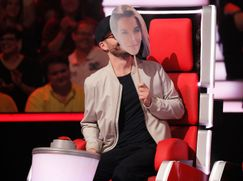 The Voice of Germany Staffel 10 Folge 21: Best-Of Teil 2