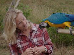 Mein peinliches Haustier Staffel 01 Folge 6: Der randalierende Papagei